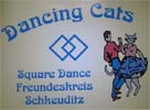 dancing-cats-schkeuditz