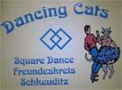 dancing-cats-schkeuditz